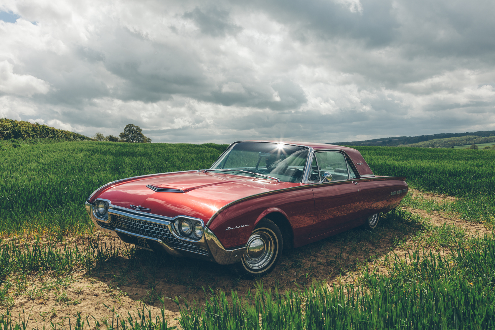 classic ford thunderbird parked in a field